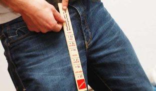 Mis suurused mehed on seksuaalsed liikmed