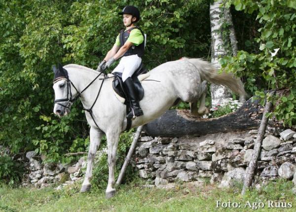 Hobuste liikme mootmed